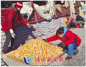 天冷水果价涨