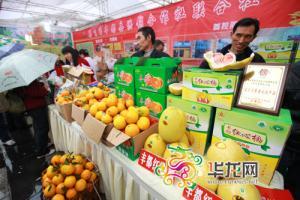 一个柚子八十 丰都专业合作社让村民年增收一万五