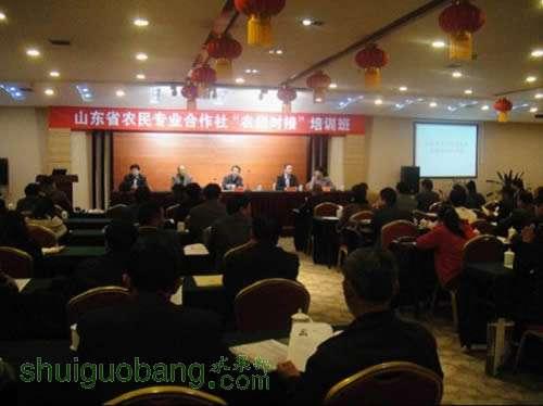 """中国生鲜采购总监赛伯表示:家乐福从2007年开始组织"""""""