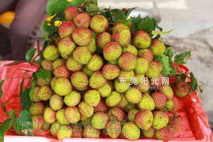 记者今天上午(5月8日)在大朗市场旁边的一些水果商铺了解到,来自海南