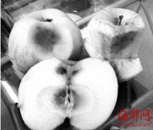 福州沃尔玛售阿克苏苹果被曝表面光鲜却个个黑心