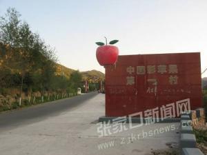 怀来彩苹果:藏身大山深处的珍稀果品