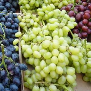 """美国最新研究:食用葡萄有助减轻压力""""副作用"""""""