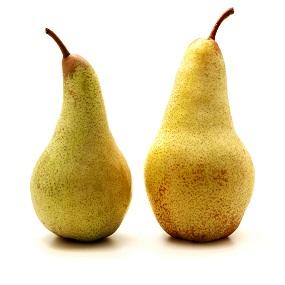 western pears