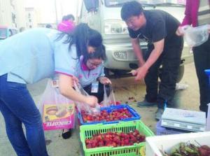 山东威海:文登的露天草莓已经上市