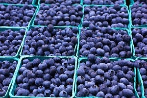 blueberries_shutterstock_headline
