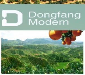 柑橘大户东方现代谈在澳上市:中国果品产业过于细碎化