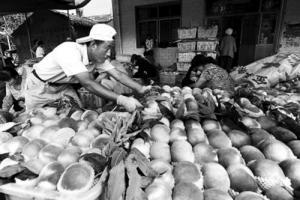 甘肃天水秦安已有蜜桃桃园10.25万亩 年产量可达12万吨