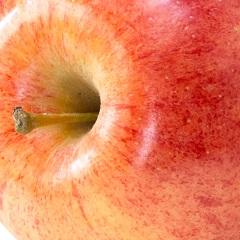 shutterstock_130215683-apple-top
