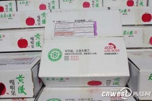 陕西黄陵苹果网上销售启动 设立首家农村电子商务服务站