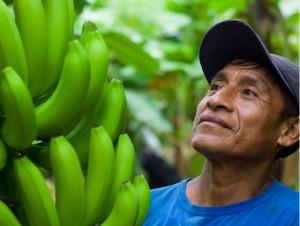 Banana-grower-Fairtrade-International