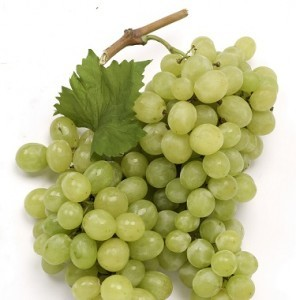grapes-square-1-296x300