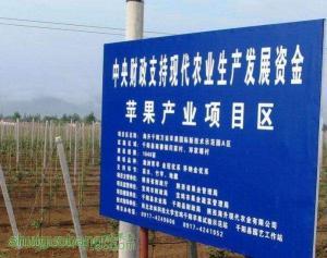 陕西宝鸡千阳现代苹果栽培模式专题集锦